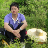 Wenbo Yang